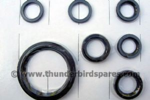 Oil Seal Set,Engine & Gearbox,Triumph T120/T140 1972-83, Five Speed